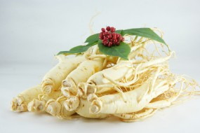 Washed Fresh Ginseng (regular/vacuum packaging)